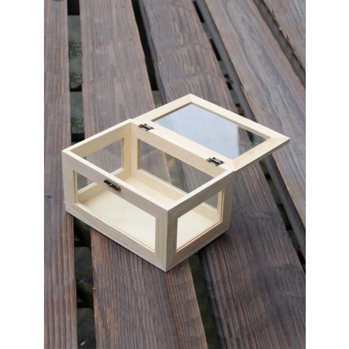 Glass Box with wooden frame